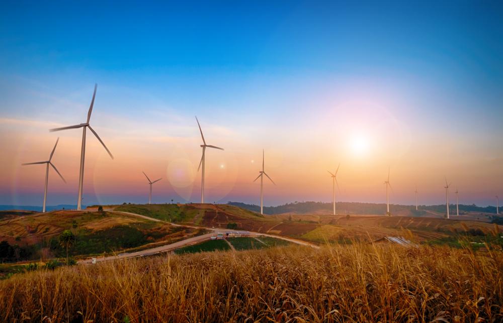 Environmental & Sustainability Training